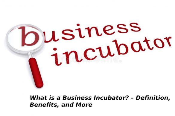 What is a Business Incubator? – Definition, Benefits, and More - 2021