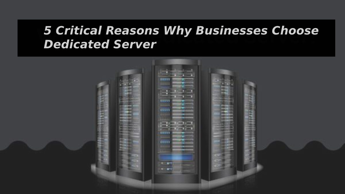 5 Critical Reasons Why Businesses Choose Dedicated Server